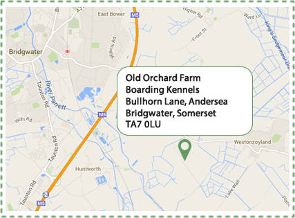 Old Orchard Farm, Boarding Kennels, Bullhorn Lane, Andersea, Bridgwater, Somerset, TA7 0LU